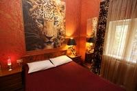 Номер на ночь № 320 Леопардовый